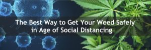 buy weed online canada 2020