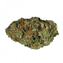 Pluto Kush Strain - Online Weed Shop